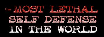The Self Defence Training System Damian Ross http://www.Erugu.com