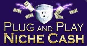 Andrew Hansen - Plug and Play Niche Cash